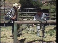 Ебут девок на ранчо